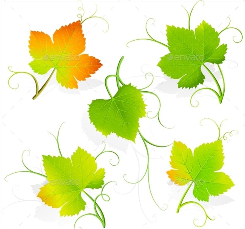 800x748 Leaf Template Printables Amp Design Free Download Creative
