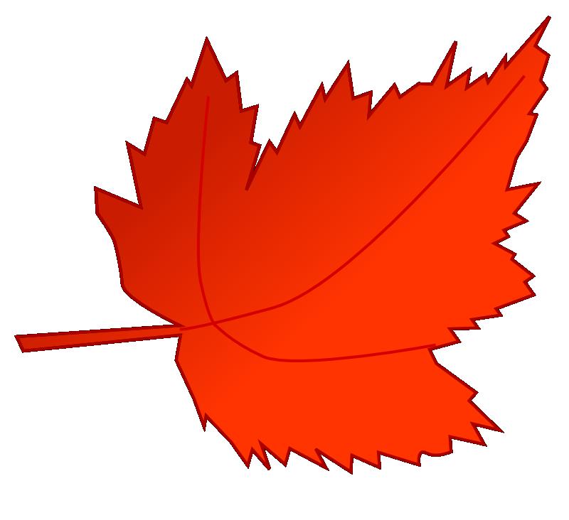 800x732 Maple Leaf Clipart Autmn