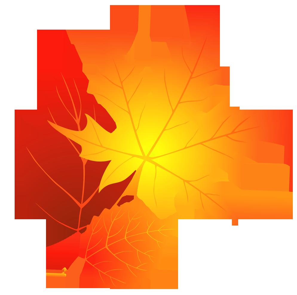 994x985 Maple Leaf Clipart Autumn Leaves