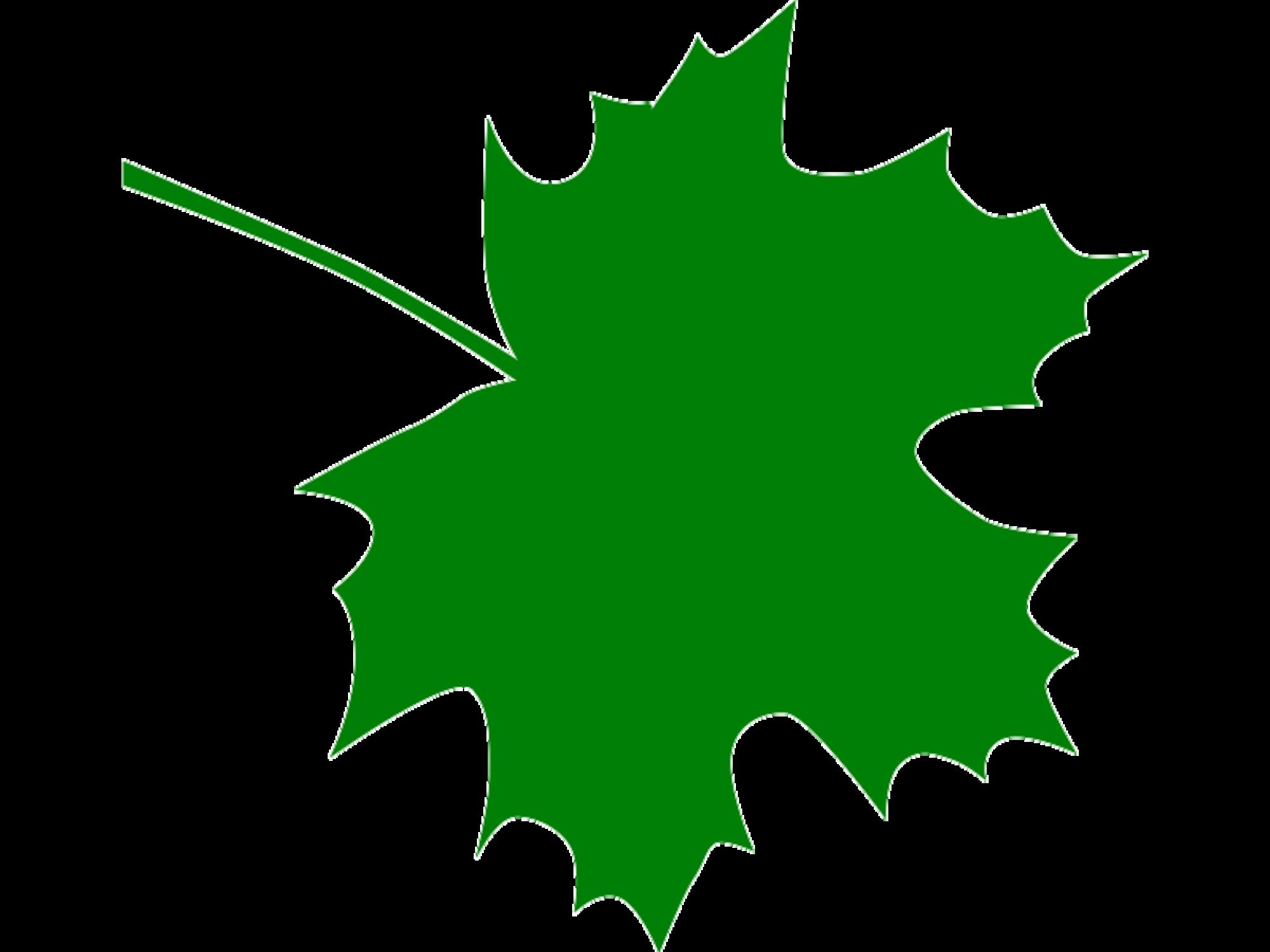 2000x1500 Sugar Maple Leaf Clipart Kid