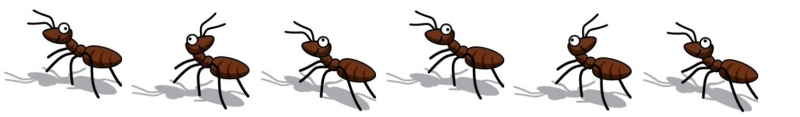 800x117 Ants Clipart Marching