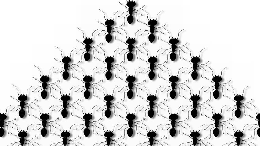 852x480 Marching Ants 2d Hand Drawn Animation.includes Alpha Matte.hd 1080