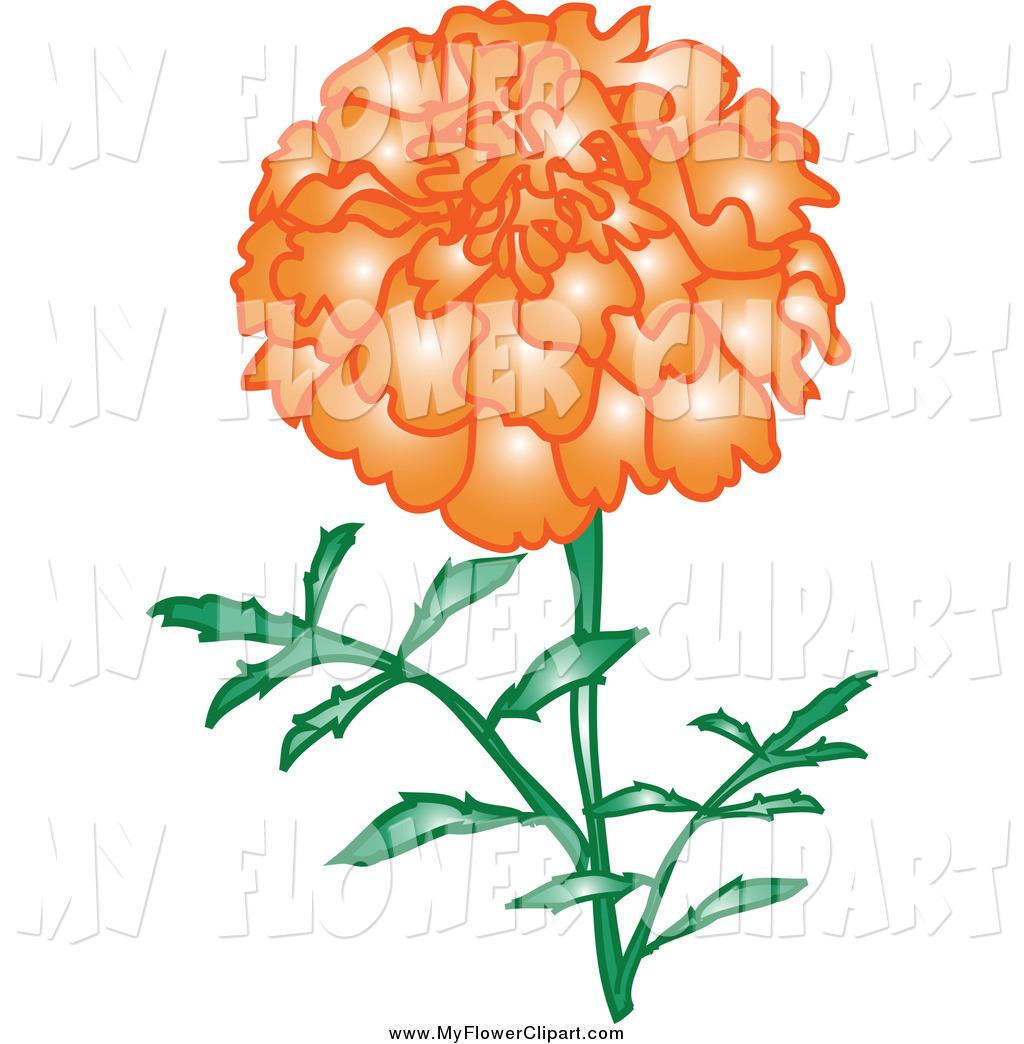 1024x1044 Flower