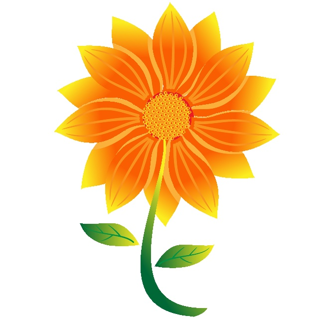 640x640 Marigold Clipart Bloom