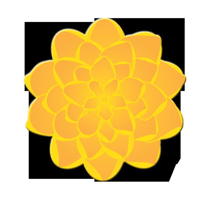 846x771 Marigold Clipart Marigold Flower