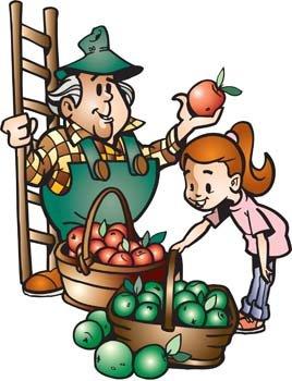 268x350 Farmer Market Clip Art, Vector Farmer Market