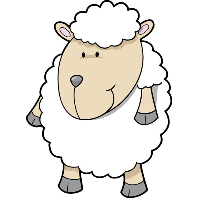 660x660 Drawn Sheep One