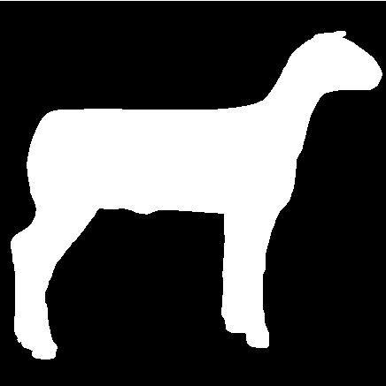 436x437 Lamb Clipart Show