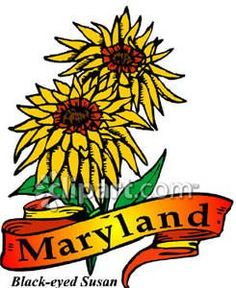 236x288 Maryland#39s nickname is The Old Line State Maine