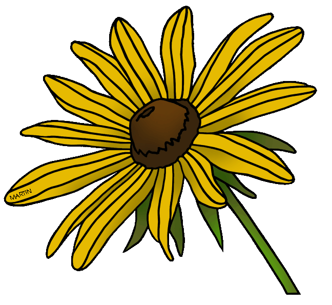 648x595 United States Clip Art by Phillip Martin, State Flower of Maryland