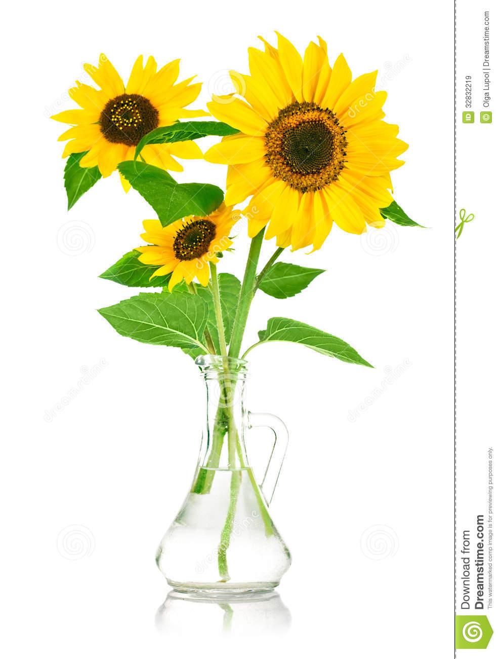 988x1300 Sunflower Clipart Sunflower Bouquet
