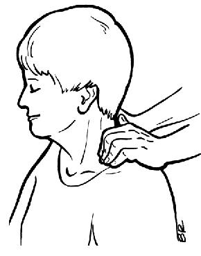 290x369 Shoulder Clipart Shoulder Massage