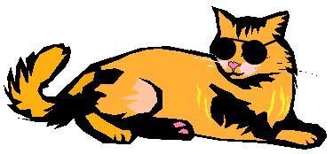 375x174 Cool Cat Clip Art