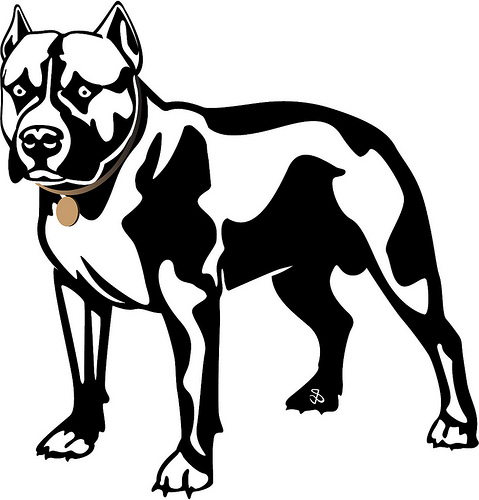 479x500 Pitbull Dog Clipart