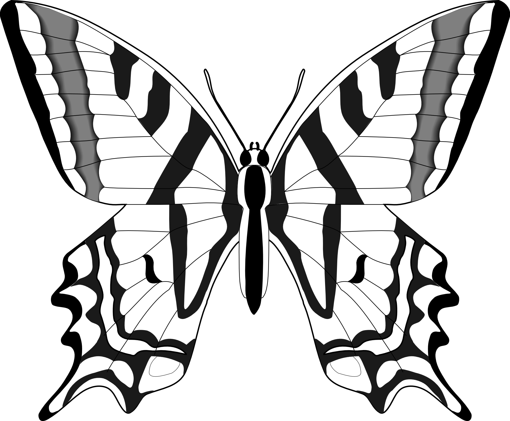 1969x1626 Best Butterfly Clipart Black And White