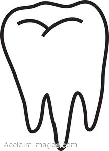 216x300 Tooth Clipart