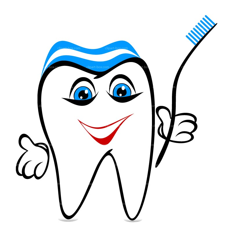 800x800 Tooth Clipart