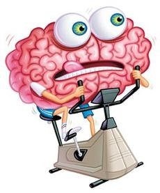230x277 Mind Clipart Working Memory