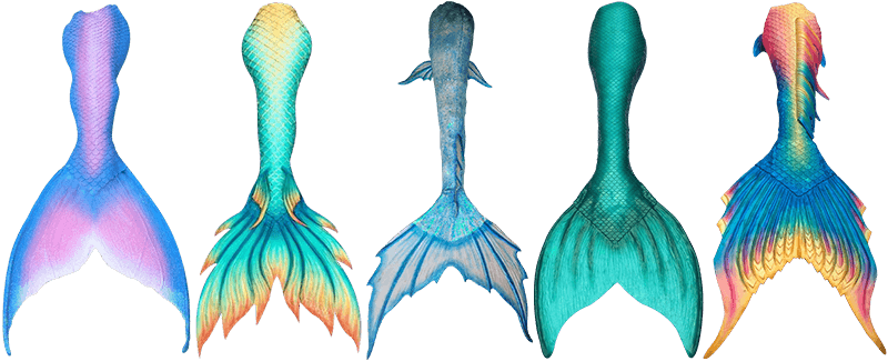 800x325 Best Realistic Mermaid Tails Top 10 Reviews