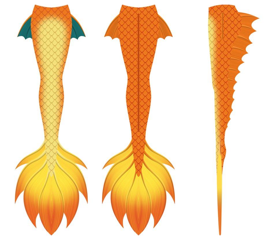 960x832 Mermaid Tail Design 2 (Charizard) By Hydra1337