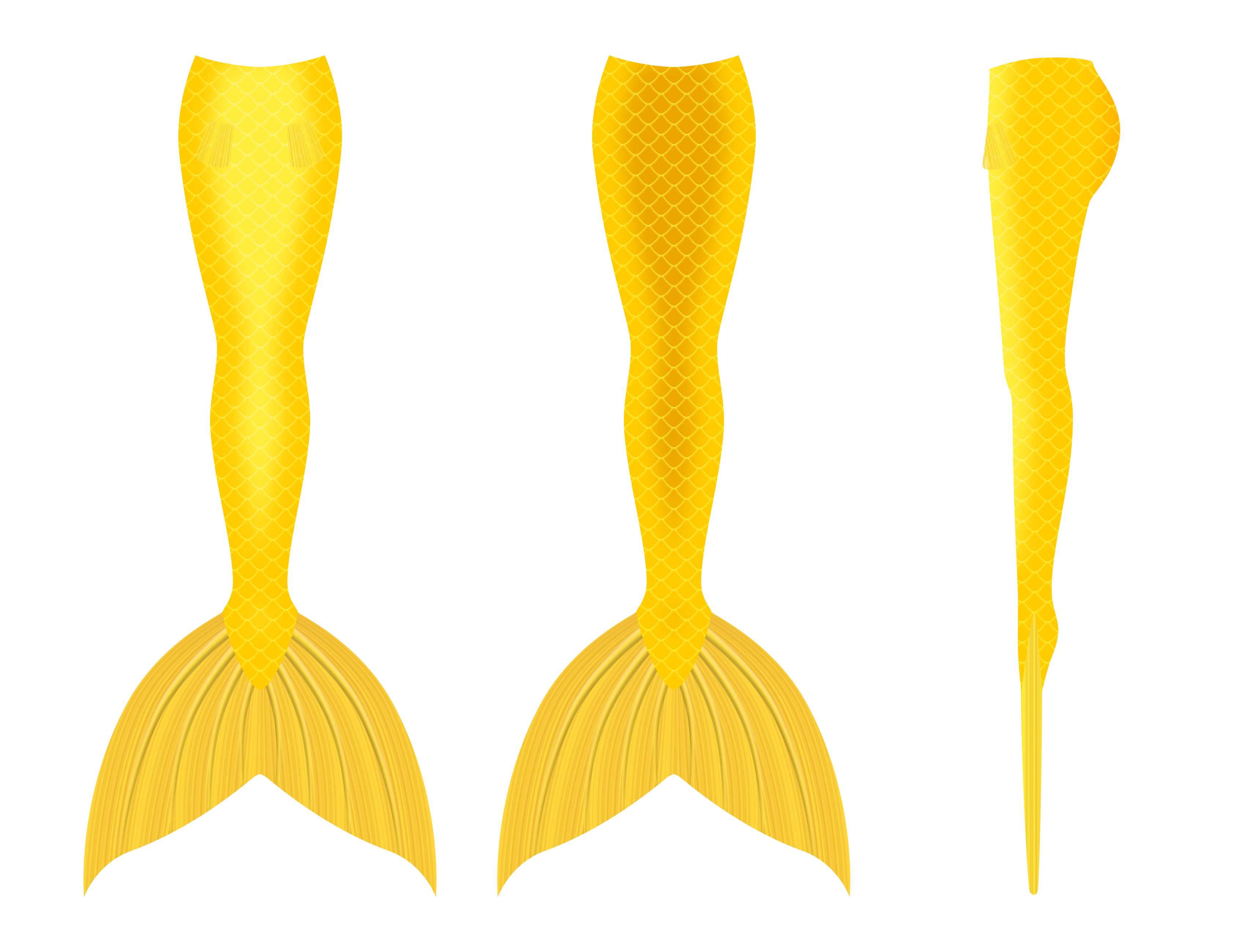 3400x2600 Mermaid Tail Design 5 (Gold) By Hydra1337