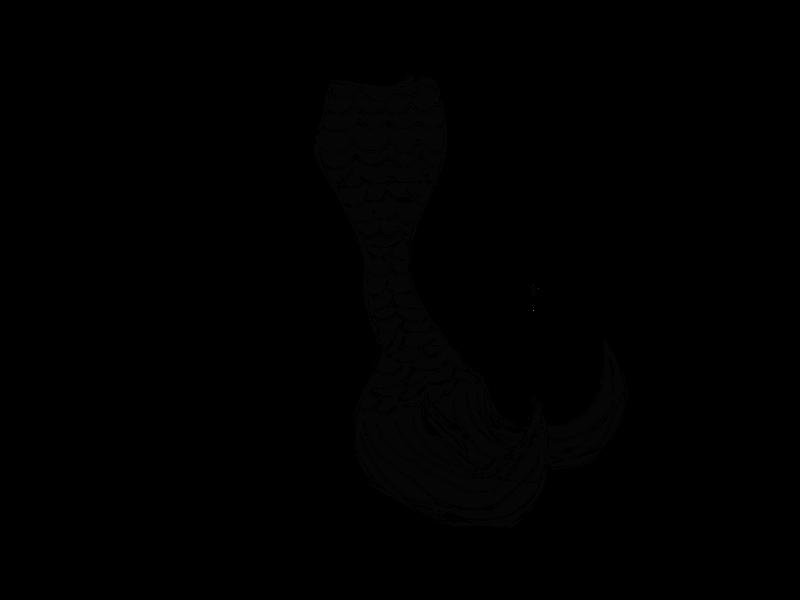 800x600 Black Mermaid Tail Png By Cookiebaby722