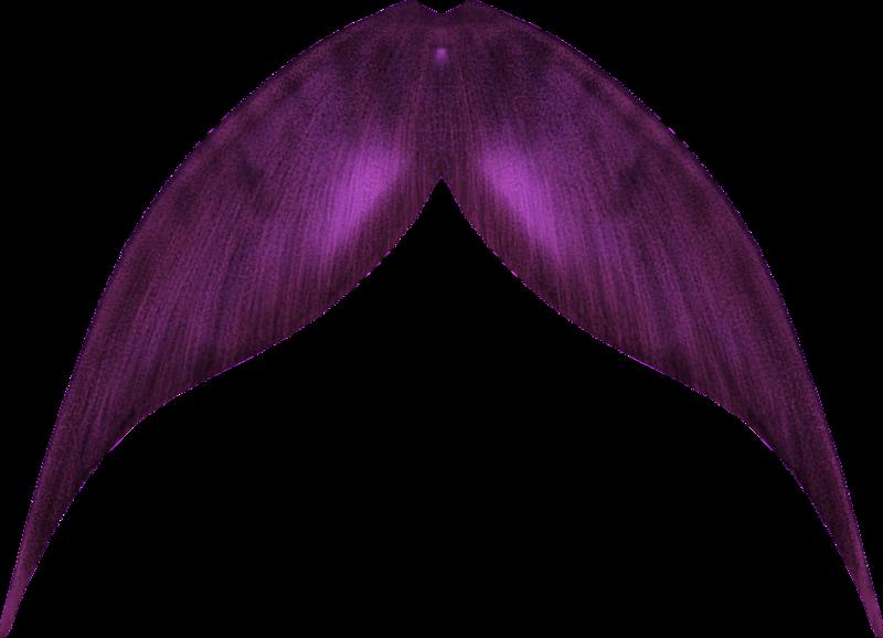 800x578 Mermaid Tail 003 By Zememz