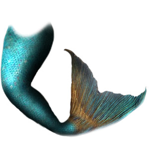 300x300 Mermaid Tail Png Transparent Png Images.