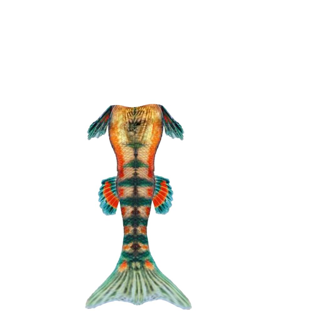1000x1000 Mermaid Tail Silhouette Clipart Panda
