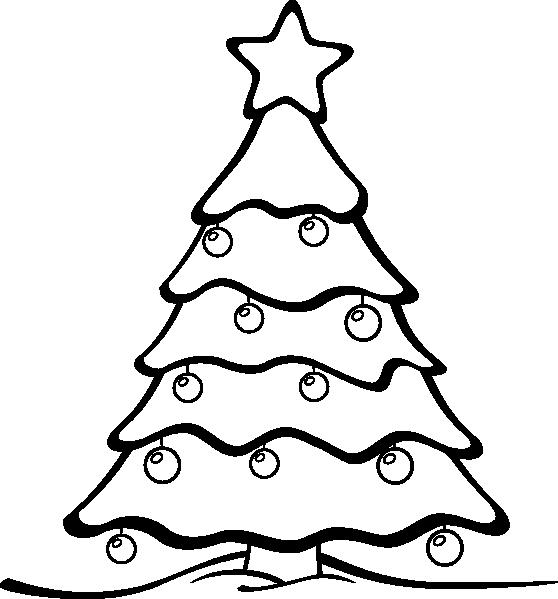 558x599 Sapin (01)