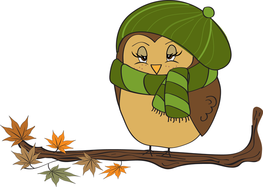 844x600 Owl Clipart November