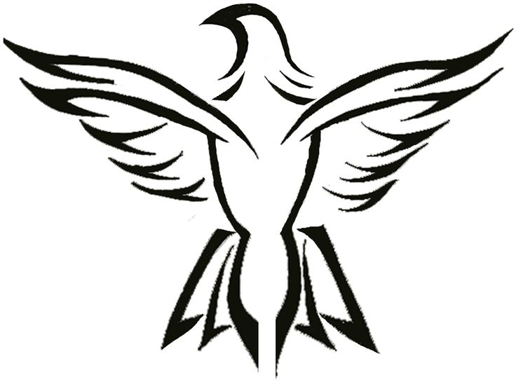 736x545 Bald Eagle Clipart Mexican Eagle