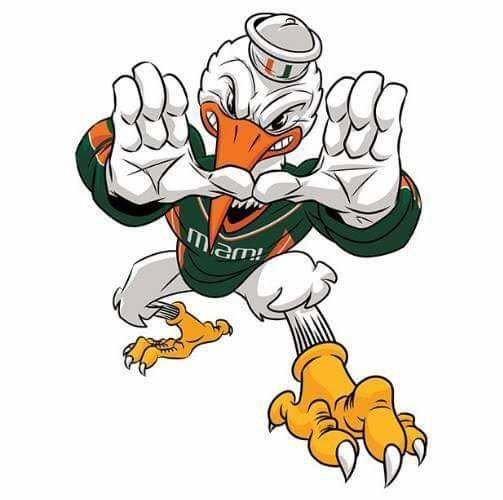 503x500 U Already Know All About The U Miami Hurricanes