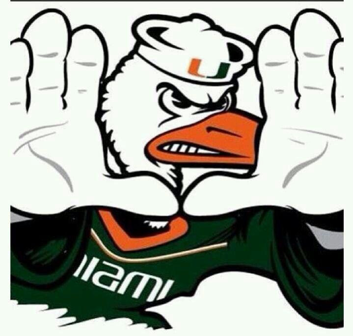 719x685 52 Best Miami Hurricanes Images University