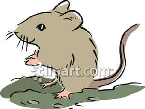 300x225 Mice Clipart Field Mouse