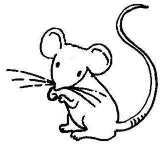 325x294 Mouse Mice Clip Art Clipart