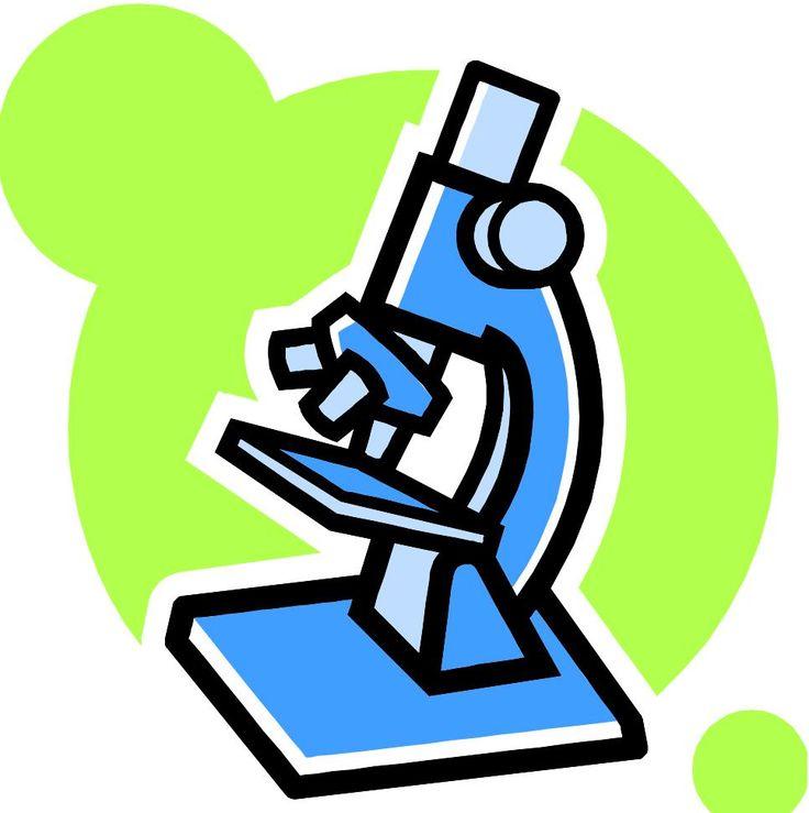 736x739 Bio Clipart Lab Work
