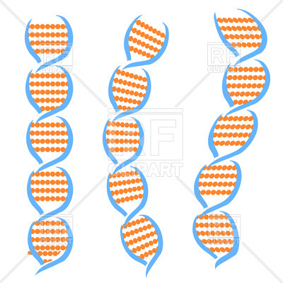 400x400 Structure Of Dna Molecules Royalty Free Vector Clip Art Image