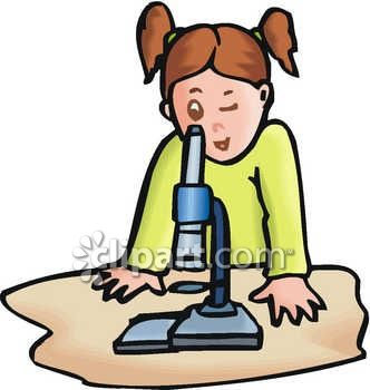 332x350 Microscope Clipart For Kids Amp Microscope Clip Art For Kids Images