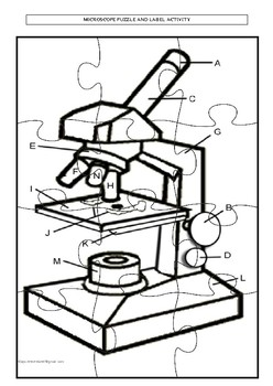 248x350 Microscope Puzzle And Label Activity Tpt