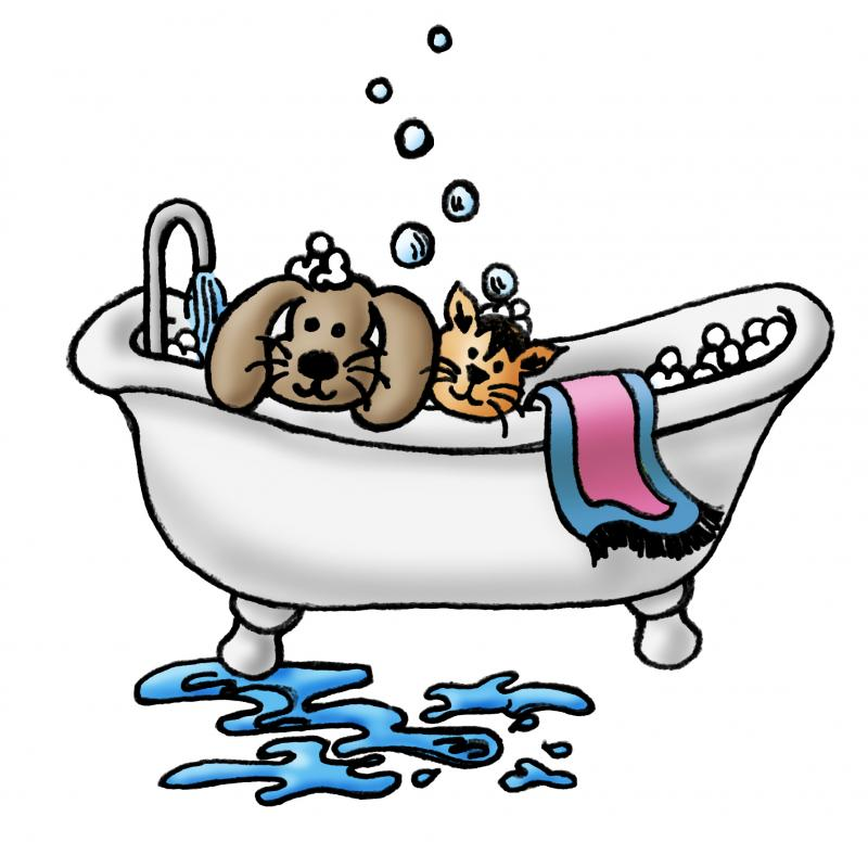 800x776 Dog Grooming Clip Art