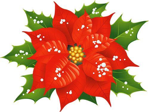 500x376 64 Best Clipart Christmas Flowers, Mistletoe, Wreaths Images
