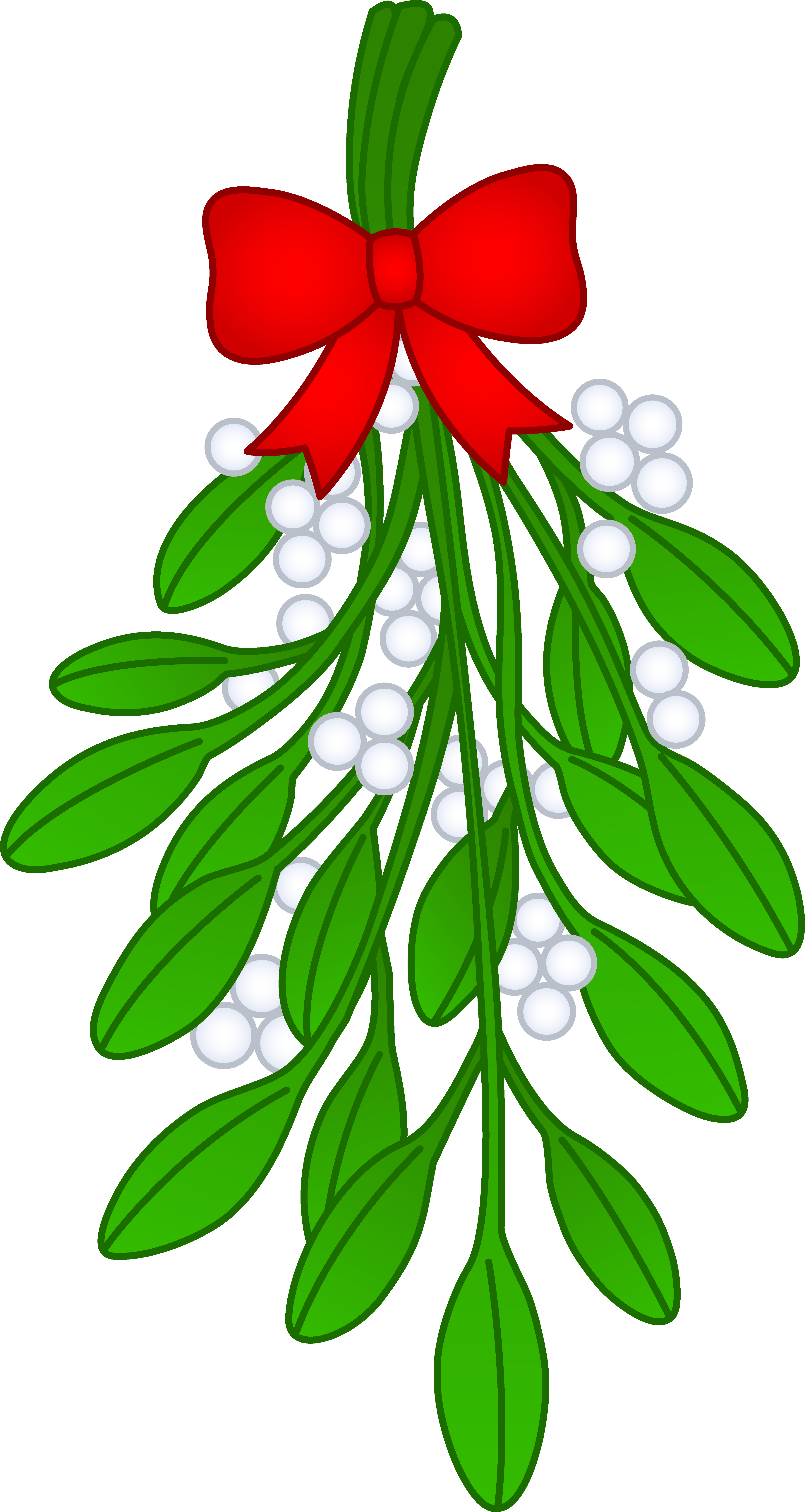 4361x8192 Christmas Mistletoe With Red Bow