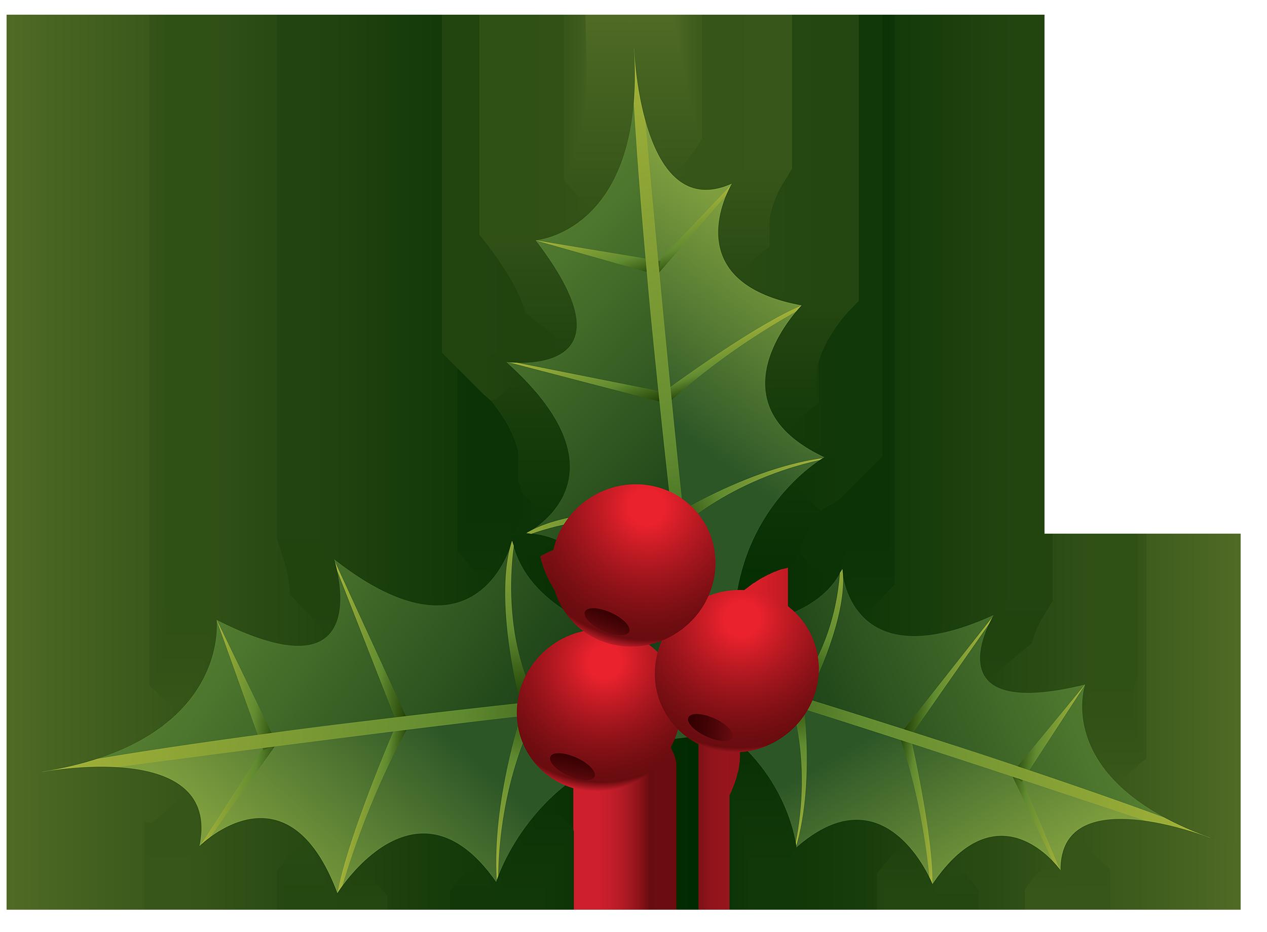 2500x1839 Mistletoe Png Clipart