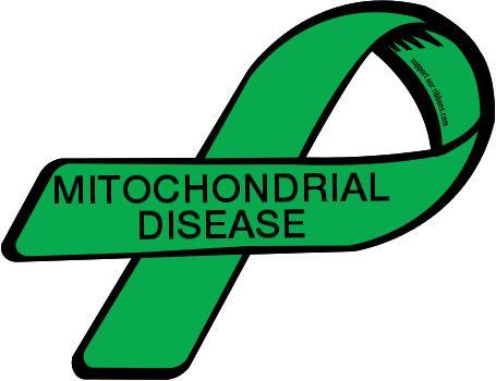 Mitochondria Clipart