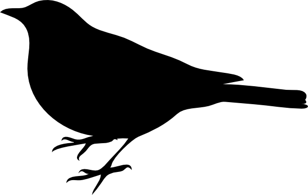 600x380 Profile Of A Bird Clip Art