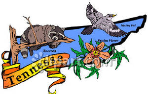 300x192 State Of Tennessee With State Symbols Of Raccoon, Mockingbird