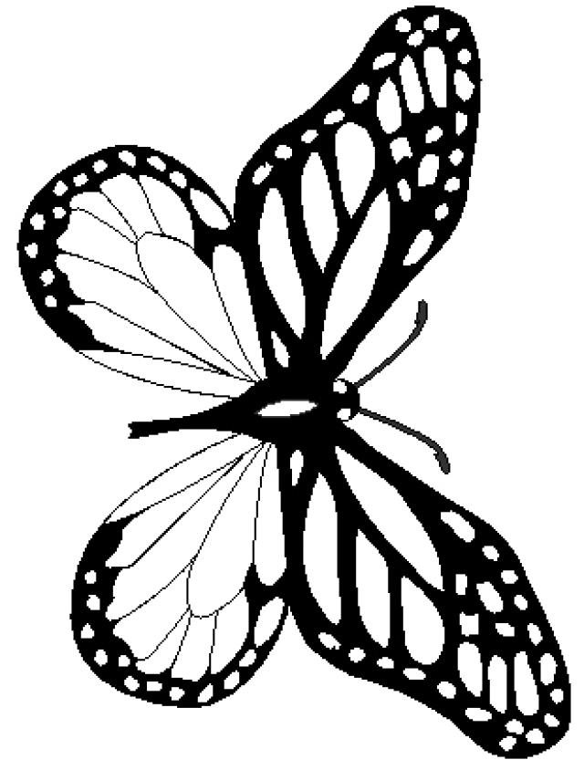 640x844 Good Monarch Butterfly Coloring Pages 91 For Free Coloring Book