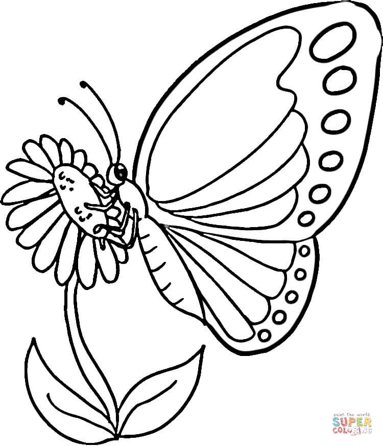 750x872 Monarch Butterfly Coloring Page Free Printable Coloring Pages