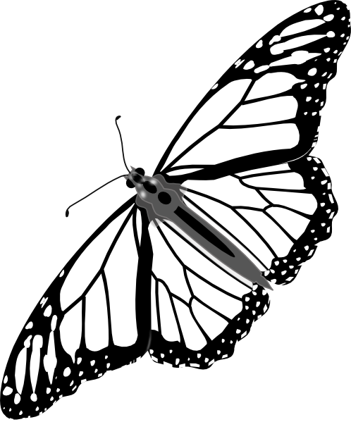 498x599 Black Butterfly Tattoos Monarch Butterfly Bw No Shadow Clip Art